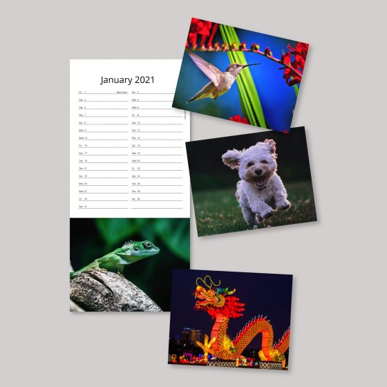 Detachable post card style calendars