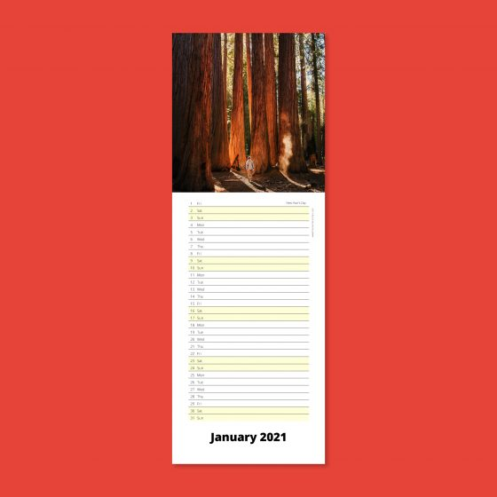 Slimline calendars for your wall