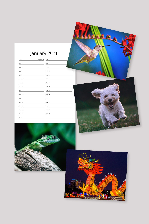 Detachable post card style calendars